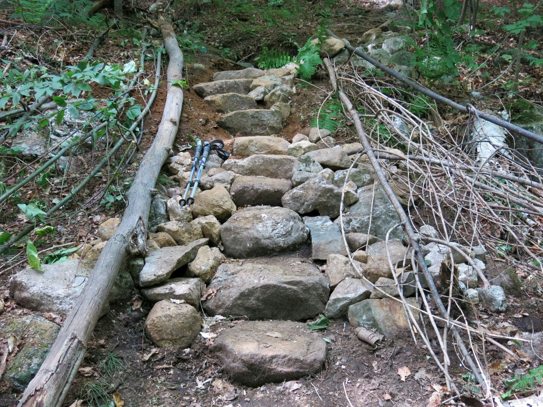Newbury Trail work sites 8-17-15 steps in place before more scree